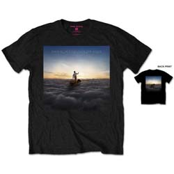 Pink Floyd Men's Tee: Endless River with Back Printing