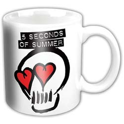 5 Seconds of Summer Boxed Standard Mug: Logo
