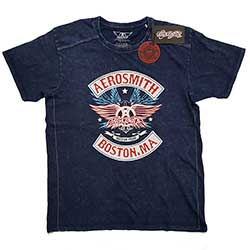 Aerosmith Unisex Tee (Snow Wash): Boston Pride