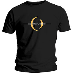 A Perfect Circle Unisex Tee: Logo