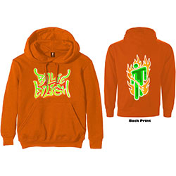 Billie Eilish Unisex Pullover Hoodie: Airbrush Flames Blohsh (Back Print)