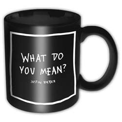 Justin Bieber Boxed Premium Mug: What Do You Mean