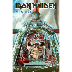 Iron Maiden Textile Poster: Aces High